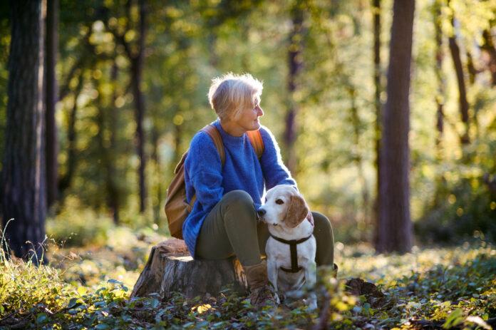 cum pierzi greutatea menopauzei