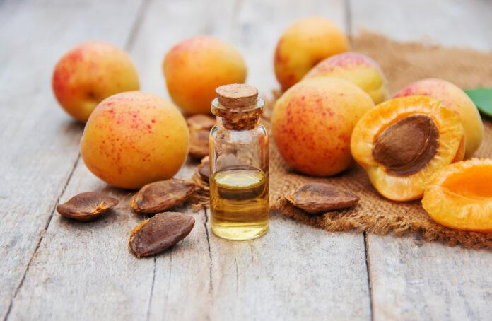 aprikosenöl in einem kleinen glas. selektiver fokus. natur.