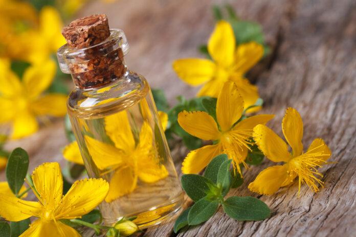 tintura di fiori di iperico in una bottiglia di vetro macro orizzontale