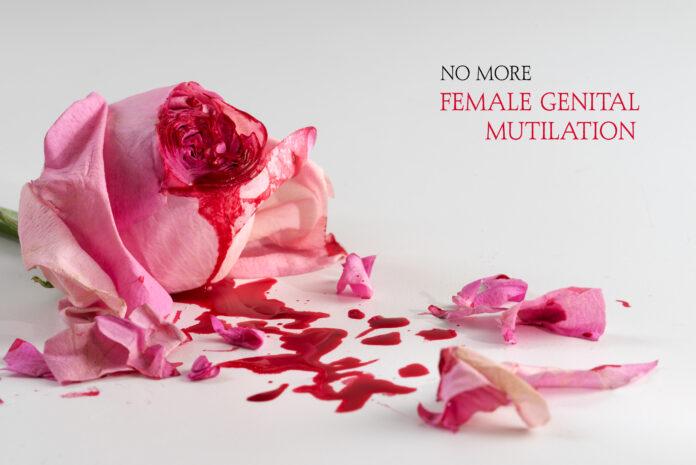 fleur de rose coupée, sang et pétales sur un fond gris clair avec le texte No More Female Genital Mutilation, concept pour la journée internationale de tolérance zéro pour les MGF le 6 février.