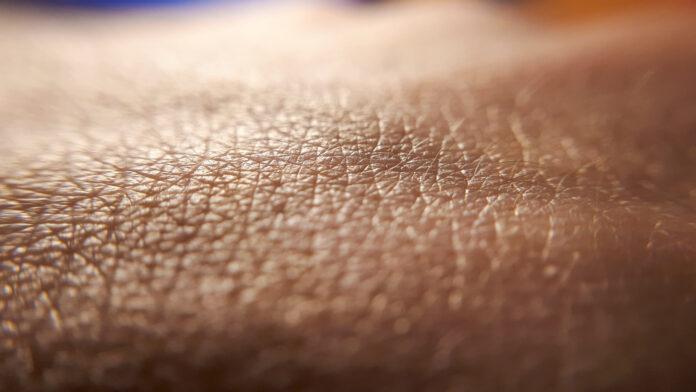 Skin background. Closeup human skin. Hand detail. Clean caucasian skin.