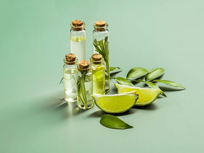 El aceite de lima sobre fondo verde de estudio en la mesa