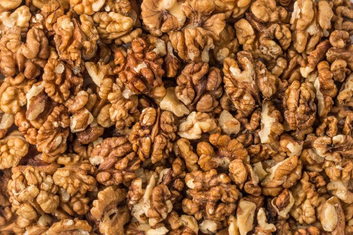 walnut, background, top view, studio shot, textured