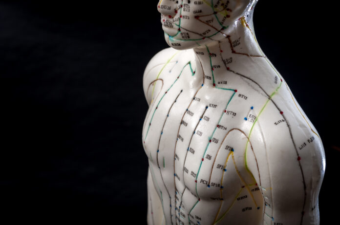Alternative medicine and east asian healing methods concept with acupuncture dummy model with copy space. Acupuncture is the practice of inserting needles in the subcutaneous tissue, skin and muscles
