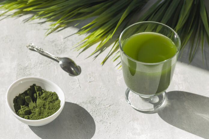 Chlorella detox healthy drink in glass and powder on light background. Superfood, natural antioxidant for a green diet. Anti-aging effect. Hard shadows